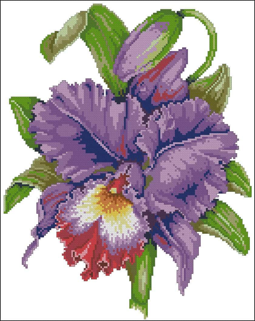 """Cross-stitch pattern """"Irises"""""""