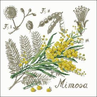 free cross-stitch pattern Mimosa