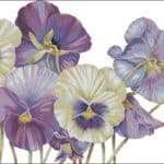 Purple pansy-free cross-stitch design