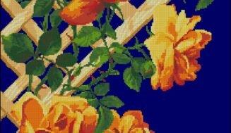 Roses on a pergola-cross-stitch design